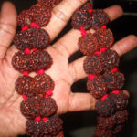 Rudraksha its Benefits & Uses?
