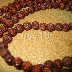 One Faced Ek Mukhi Rudraksha Mala Rosary 108+1 beads Ceylon