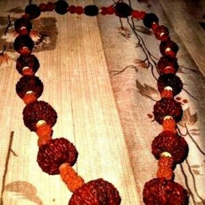 INDRAKSHI MALA COMBINATION OF 1 TO 21 MUKHI RUDRAKSHA RELIGIOUS COLLECTIBLE